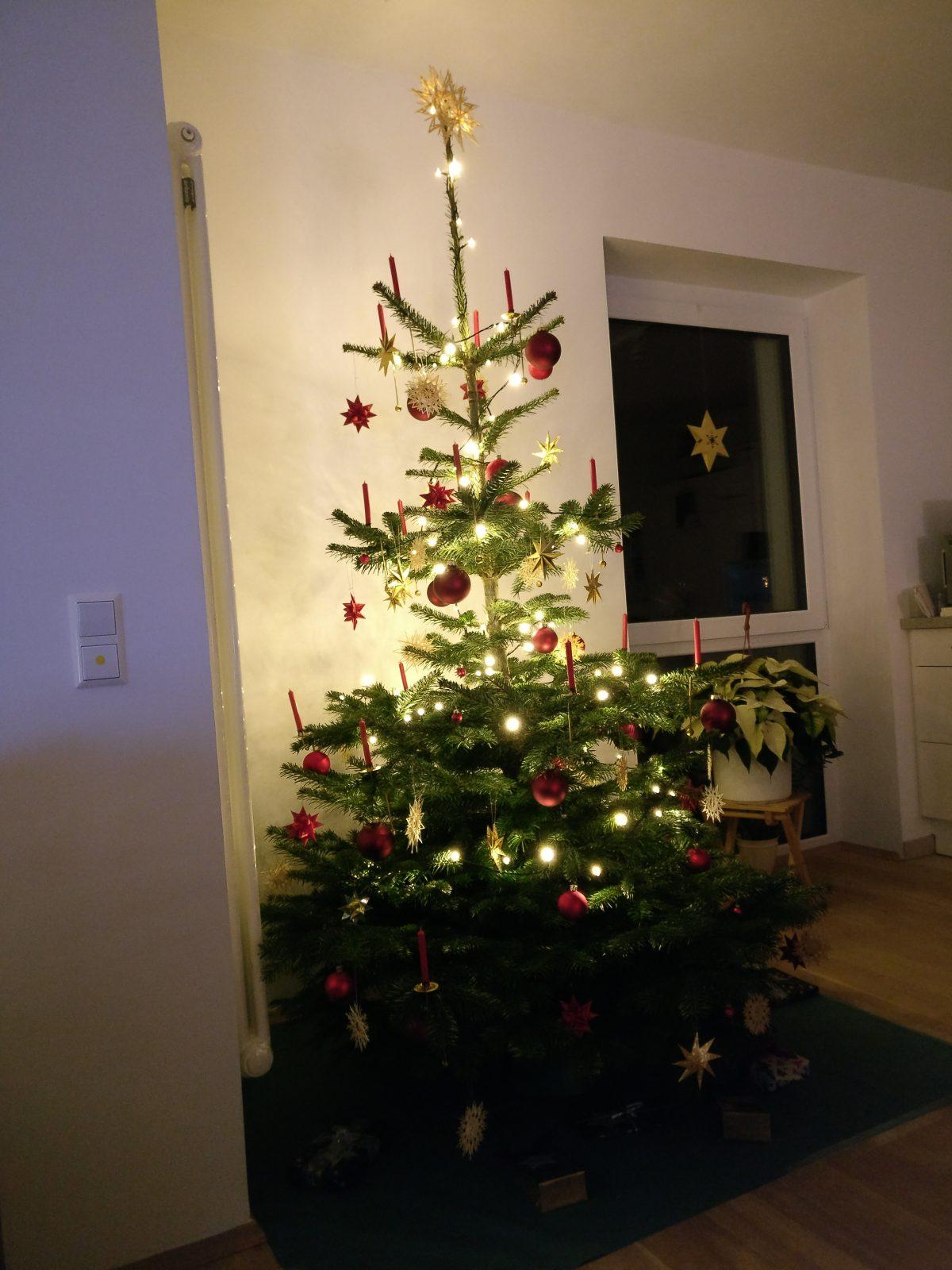 Und wieder steht ein Baum da