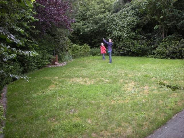 Der Garten vorher